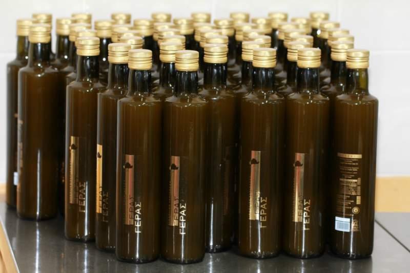 Grünes Olivenöl aus jung geernteten Oliven